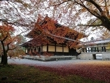 'Kyoto' from the web at 'http://www.japan-guide.com/blog/g/koyo15_151113_kyoto_t2.jpg'