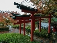 'Kyoto' from the web at 'http://www.japan-guide.com/blog/g/koyo15_151117_kyoto_t2.jpg'