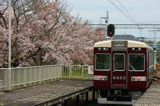 Train at the hankyu arashiyama station surrounded by flowers