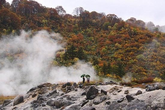 Schauwecker U0026 39 S Japan Travel Blog  Autumn Color Report