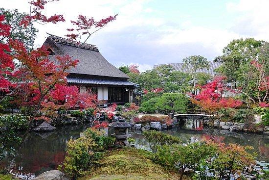 Autumn Color Report 2010: Nara Report