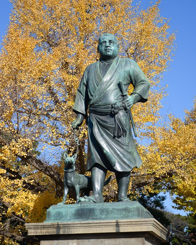 Ueno Park Autumn Maples in Ueno Park