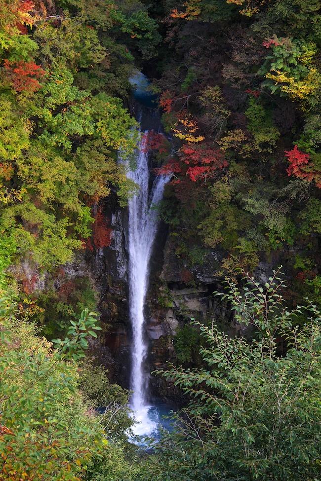 japan guide autumn report 2014