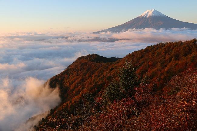 http://www.japan-guide.com/blog/koyo14/g/141024_02.jpg