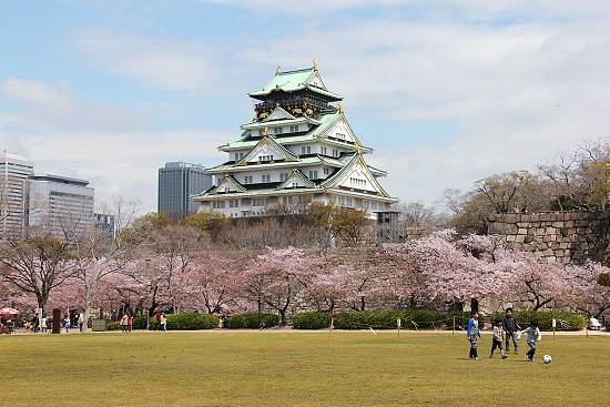 Cherry Blossom Report 2012: Osaka Report