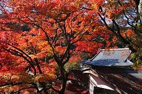 Yoshiminedera, Kyoto