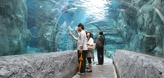 His name has the seikan tunnel of the character of the cities in the vicinity of the two tunnel entrances