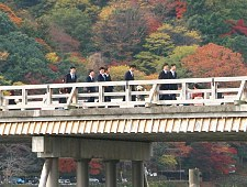 Kyoto Travel Arashiyama And Sagano