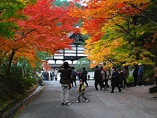 'Kyoto' from the web at 'http://www.japan-guide.com/g6/XYZeXYZe3905_225.jpg'