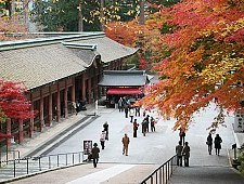 'Kyoto' from the web at 'http://www.japan-guide.com/g6/XYZeXYZe3911_225.jpg'