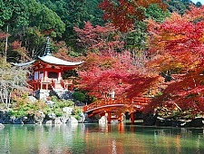 'Kyoto' from the web at 'http://www.japan-guide.com/g6/XYZeXYZe3916_225.jpg'