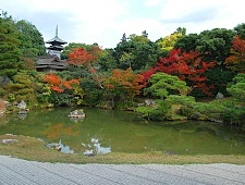 'Kyoto' from the web at 'http://www.japan-guide.com/g6/XYZeXYZe3929_225.jpg'