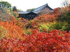'Kyoto' from the web at 'http://www.japan-guide.com/g6/XYZeXYZe3930_225.jpg'