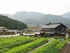 'Kyoto' from the web at 'http://www.japan-guide.com/g6/XYZeXYZe3932_225.jpg'