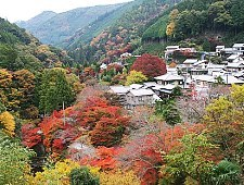'Kyoto' from the web at 'http://www.japan-guide.com/g6/XYZeXYZe3940_225.jpg'
