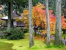 'Kyoto' from the web at 'http://www.japan-guide.com/g6/XYZeXYZe3955_225.jpg'