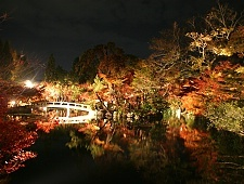 'Kyoto' from the web at 'http://www.japan-guide.com/g6/XYZeXYZe3956_225.jpg'