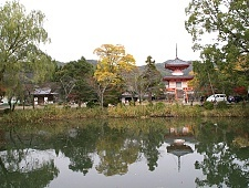 'Kyoto' from the web at 'http://www.japan-guide.com/g6/XYZeXYZe3964_225.jpg'