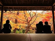 'Kyoto' from the web at 'http://www.japan-guide.com/g6/XYZeXYZe3969_225.jpg'