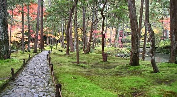 Kyoto travel kokedera moss temple - Moosgarten kyoto ...