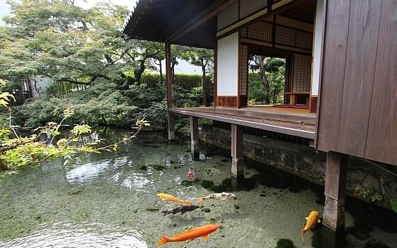 Shimabara Travel Shimabara Castle