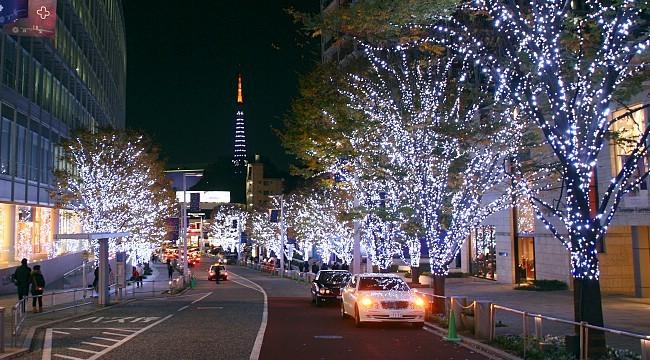 winter illuminations in tokyo. Black Bedroom Furniture Sets. Home Design Ideas