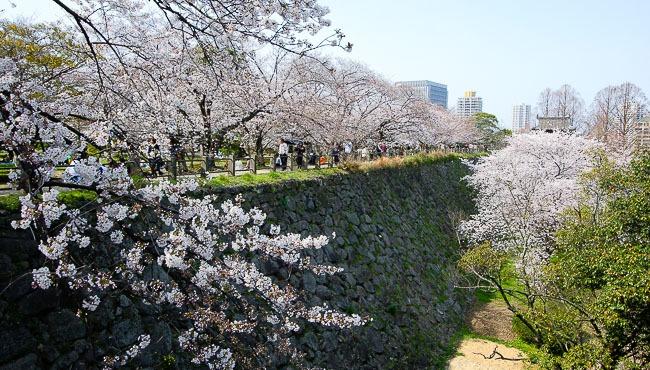 Fukuoka Travel: Fukuoka Castle Ruins (Maizuru Park)