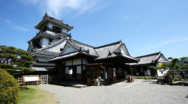 Kochi Japan  city images : Kochi Travel: Kochi Castle