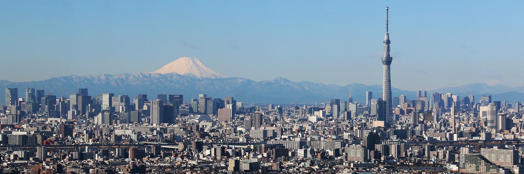 Tokyo Tour Guide
