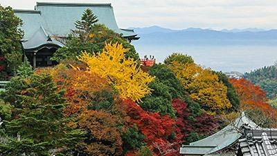 Nara's Tsubosaka Temple - Nara - Japan Travel - Japan Tourism ...