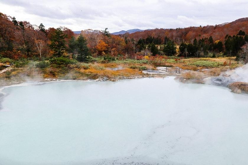 Autumn Color Reports 2018 - Hachimantai: Peak Colors