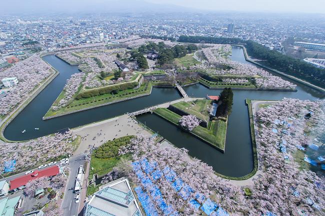 Japan Guide Travel Report