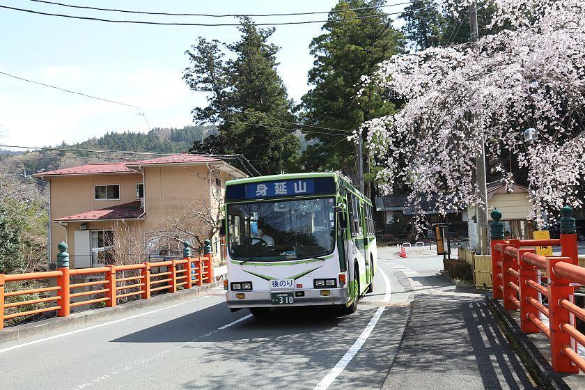 cherry blossom reports 2018 minobu full bloom