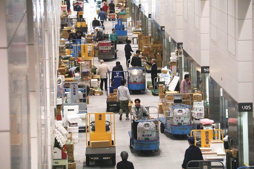 Schauwecker S Japan Travel Blog Toyosu Market Opens To