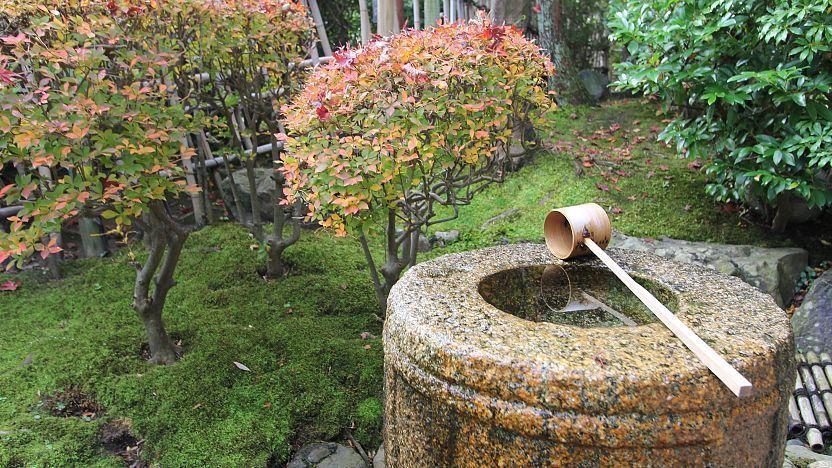 Tea Ceremony, Japanese Tea Garden Water Basin