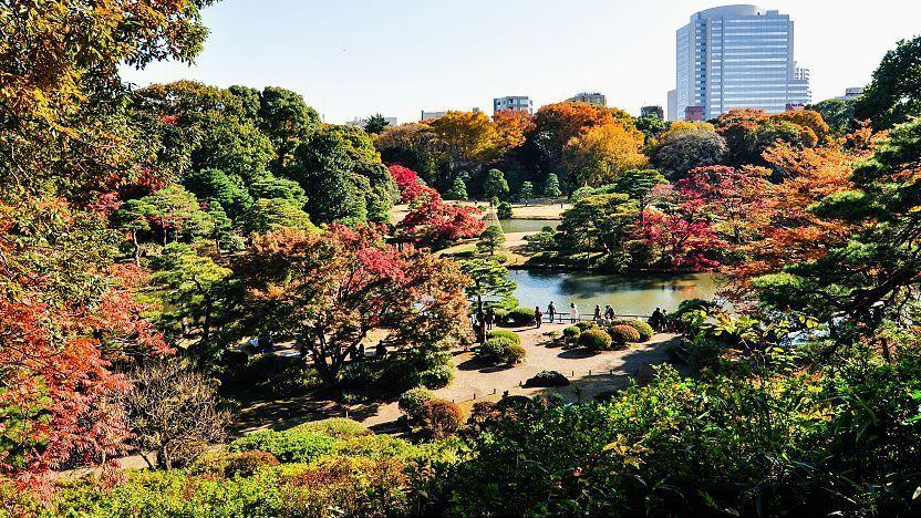 Tokyo Travel Rikugien Garden