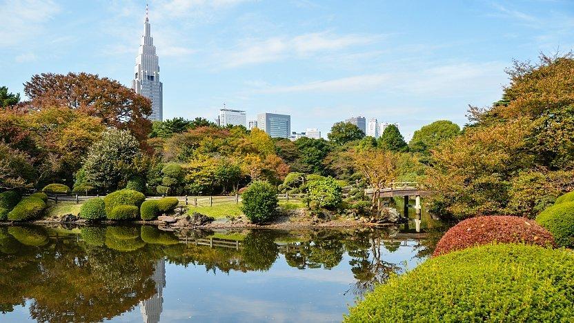 Image result for shinjuku gyoen national garden
