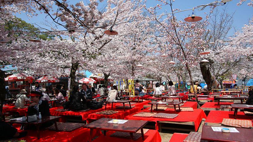 Image result for maruyama park