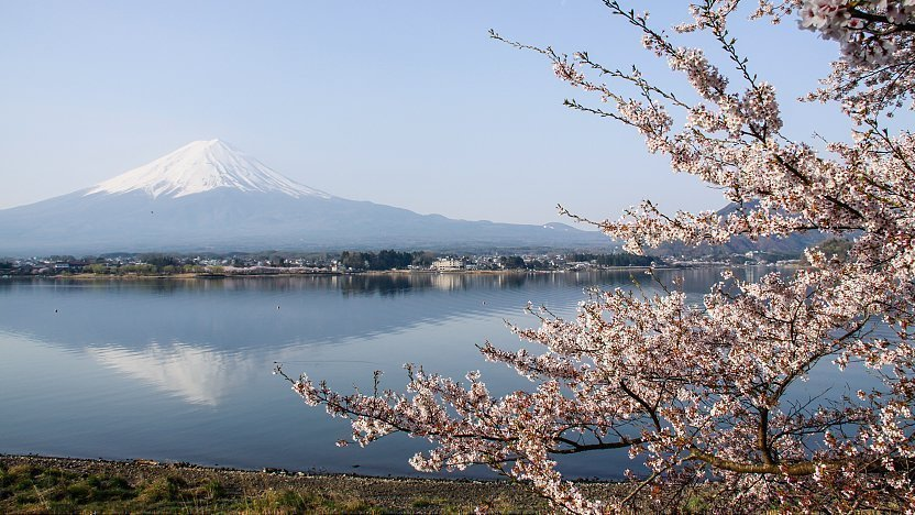 Fuji Five Lakes Travel Lake Kawaguchiko
