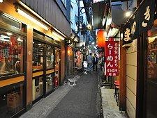 Cái nhìn tổng quan về đất nước mặt trời mọc - Nhật Bản 14