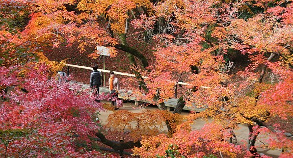 Kyoto Travel Guide Kitano Tenmangu Shrine