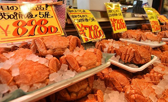 Image result for sapporo curb market