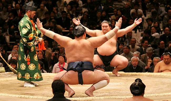 Image result for japan sumo information