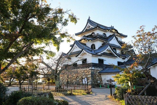 Image result for koka japan