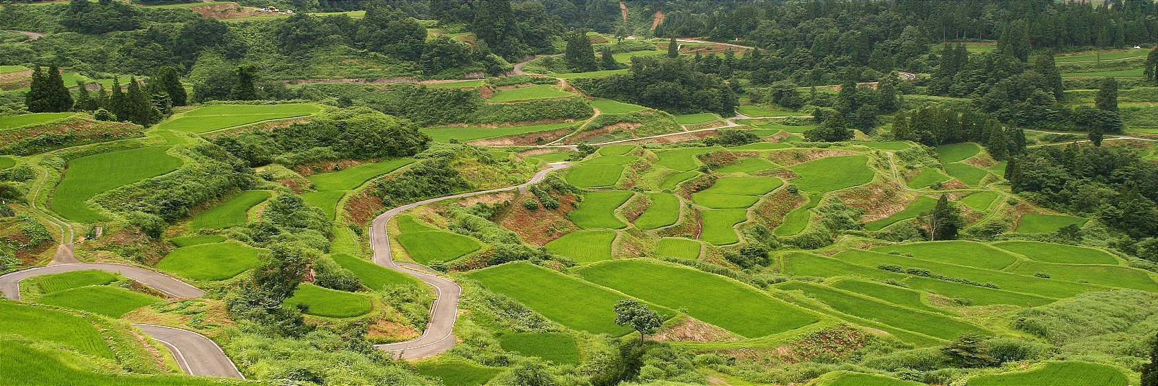 Farms And Agriculture Agritourism In Japan